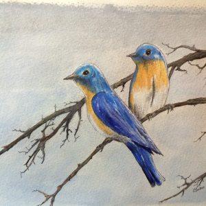 BLUEBIRDS #1